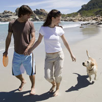 Picture of couple and dog on the beach